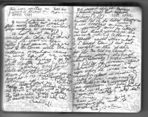 Diary test